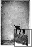 Spain, Andalucia, Jerez De la Frontera, El Cuadrejon, An Osborne Bull or Toro De Osborne Prints by Alan Copson
