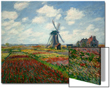 A Field of Tulips in Holland, 1886 Prints by Claude Monet