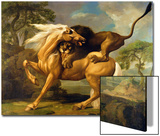A Lion Attacking a Horse, c.1762 Art by George Stubbs