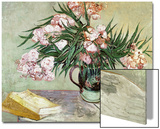Vase with Oleanders and Books, c.1888 Poster von Vincent van Gogh