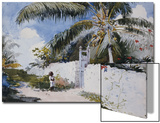 A Garden in Nassau, 1885 Posters by Winslow Homer