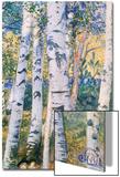 Birch Trees, 1910 Prints by Carl Larsson