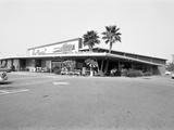 Donald Nixon Properties Photographic Print by Grey Villet