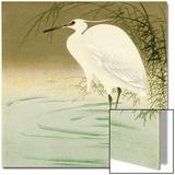 Wading Egret Prints by Koson Ohara