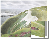 The Westbury Horse Art by Eric Ravilious