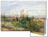 Wildflowers with a View of Dublin Dunleary Prints by Andrew Nicholl