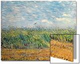 Wheatfield with Lark, 1887 Affiches par Vincent van Gogh
