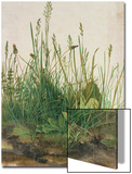 Large Piece of Turf, 1503 Posters by Albrecht Dürer