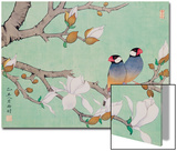Twin Birds in the Branches Prints by Hsi-Tsun Chang