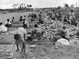 New Taxi-Strip Foundations are Laid by Natives of Assam Valley, Doubling China-India Air Traffic Fotodruck von William Vandivert