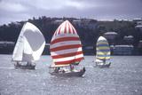 July 1973: Sailing in Bermuda Fotografisk tryk af Alfred Eisenstaedt