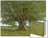 The Oak of Flagey, Called Vercingetorix Print by Gustave Courbet