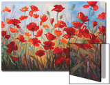 Poppies at Dusk III Prints by Stanislav Sidorov