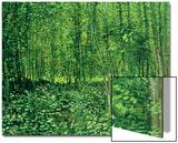 Bois et sous-bois, vers 1887 Poster par Vincent van Gogh