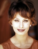 Sophia Loren Photo by  Globe Photos LLC