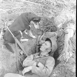 U.S. Marine in a Foxhole with War Scouting Husky Dog During the Landing of Guam, August 1944 Photographic Print by W. Eugene Smith