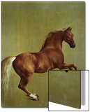 Whistlejacket, 1762 Print by George Stubbs