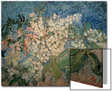 Blossoming Chestnut Branches Prints by Vincent van Gogh