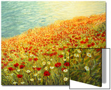 Poppies On The Seashore Posters by  kirilstanchev