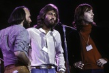 Bee Gees Photo by  Globe Photos LLC