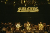 Bee Gees Photo by  Globe Photos LLC