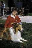 Lassie Photo by  Globe Photos LLC