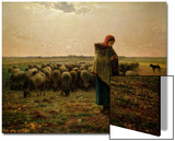 Shepherdess with Her Flock, 1863 Posters by Jean-François Millet