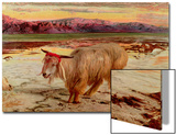 The Scapegoat, 1854 Prints by William Holman Hunt