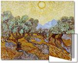 Olive Trees, 1889 Prints by Vincent van Gogh