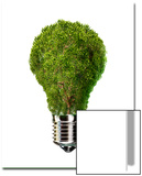 Light Bulb with Tree Inside Glass, Isolated on White Background Posters