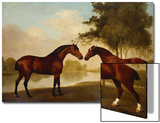 Two Hunters by a Lake Posters by George Stubbs
