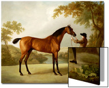 Tristram Shandy, a Bay Racehorse Held by a Groom in an Extensive Landscape, circa 1760 Prints by George Stubbs