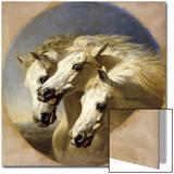 Pharaoh's Horses, 1848 Print by John Frederick Herring I