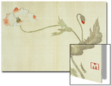 Poppy from Primrose, Mount Fuji, Bamboo and Toy Bird, Kanzan and Jittoku, Cuckoo under the Moon, Posters by Sakai Hoitsu