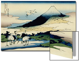 36 Views of Mount Fuji, no. 14: Umegawa in Sagami Province Poster by Katsushika Hokusai