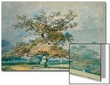 A Landscape with an Old Oak Tree Posters by J. M. W. Turner