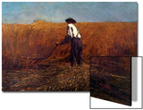 The Veteran in a New Field Print by Winslow Homer