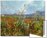 Field with Poppies Art by Vincent van Gogh