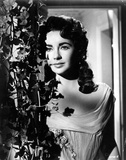 Elizabeth Taylor Photo by  Globe Photos LLC