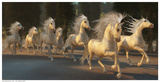Stallion Run Painting Prints by C. Ford
