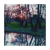 Last Glow on the Meadow, 2009 Giclee Print by Helen White
