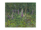 Foxgloves Giclee Print by Susan Ryder