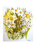 Daffodils, Narcissus, Forsythia and Primroses, 2000 Giclée-trykk av Joan Thewsey
