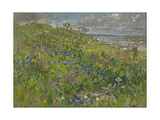 Headland Flowers near Berwick Giclee Print by Susan Ryder