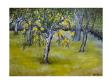 The Little Pear Tree, 2005 Giclee Print by Joan Thewsey