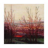 Winter's Light, 2012 Giclee Print by Helen White