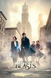 Fantastic Beasts- The Streets Of New York Láminas