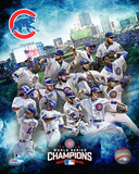 Chicago Cubs 2016 World Series Champions Team Composite Photo