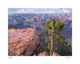 Grandview Point Limited Edition by Ken Bremer