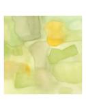 Mango Cucumber Print by Max Jones